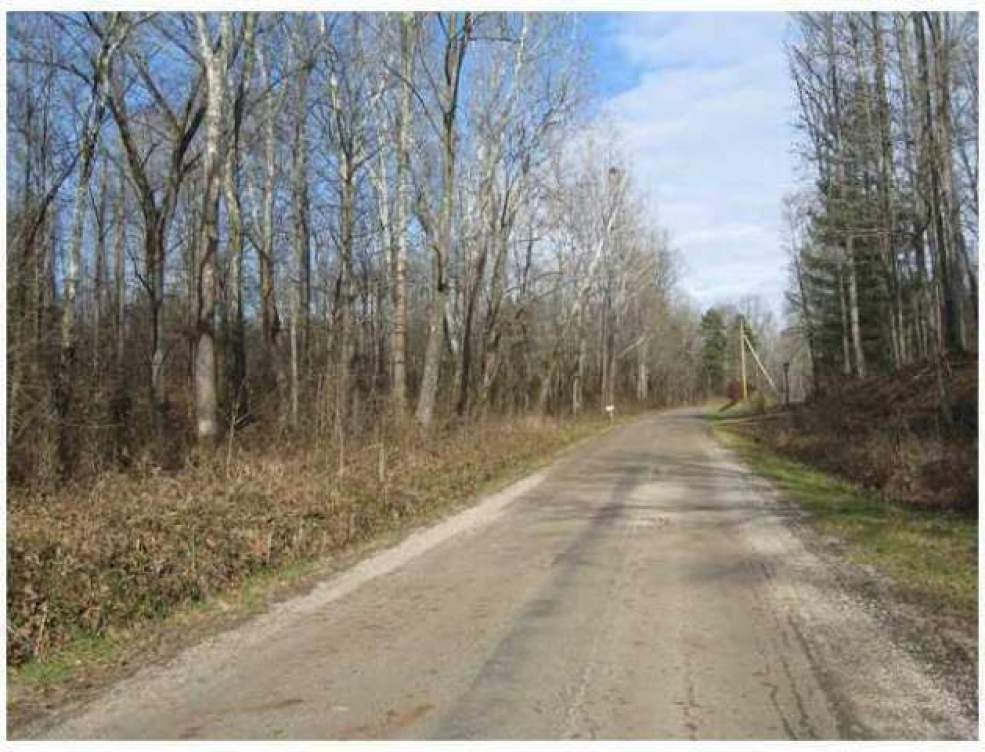0 Painters Ridge Road, Vinton, Ohio 45686, ,Land/farm,For Sale,Painters Ridge,212004405